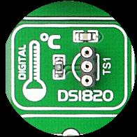 DS1820 Temp Sensor