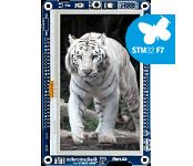 Mikromedia Plus for STM32F7