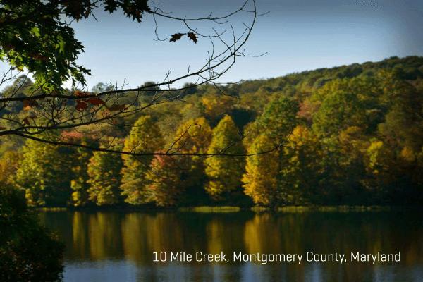 EasyPIC v7 10 Mile Creek