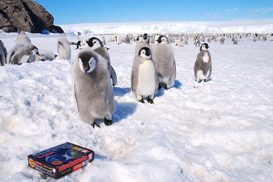 mikroElektronika box with EasyPIC5 at South Pole