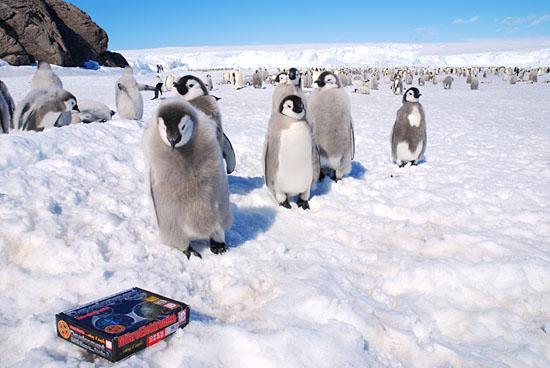 mikroElektronika box with EasyPIC5 at South Pole