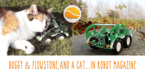 Buggy, FlowStone, Robot Mag