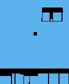 mikroSDK font icon